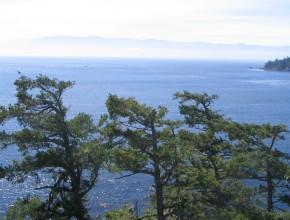 Faszination Vancouver Island 7