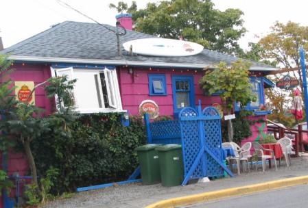 Faszination Vancouver Island 17