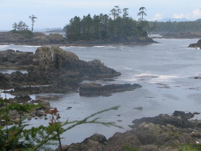 Faszination Vancouver Island 3