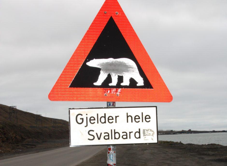 Warnung vor dem Eisbär_Longyearbyen