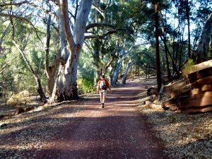 Wanderung Flinders Ranges NP, Australien