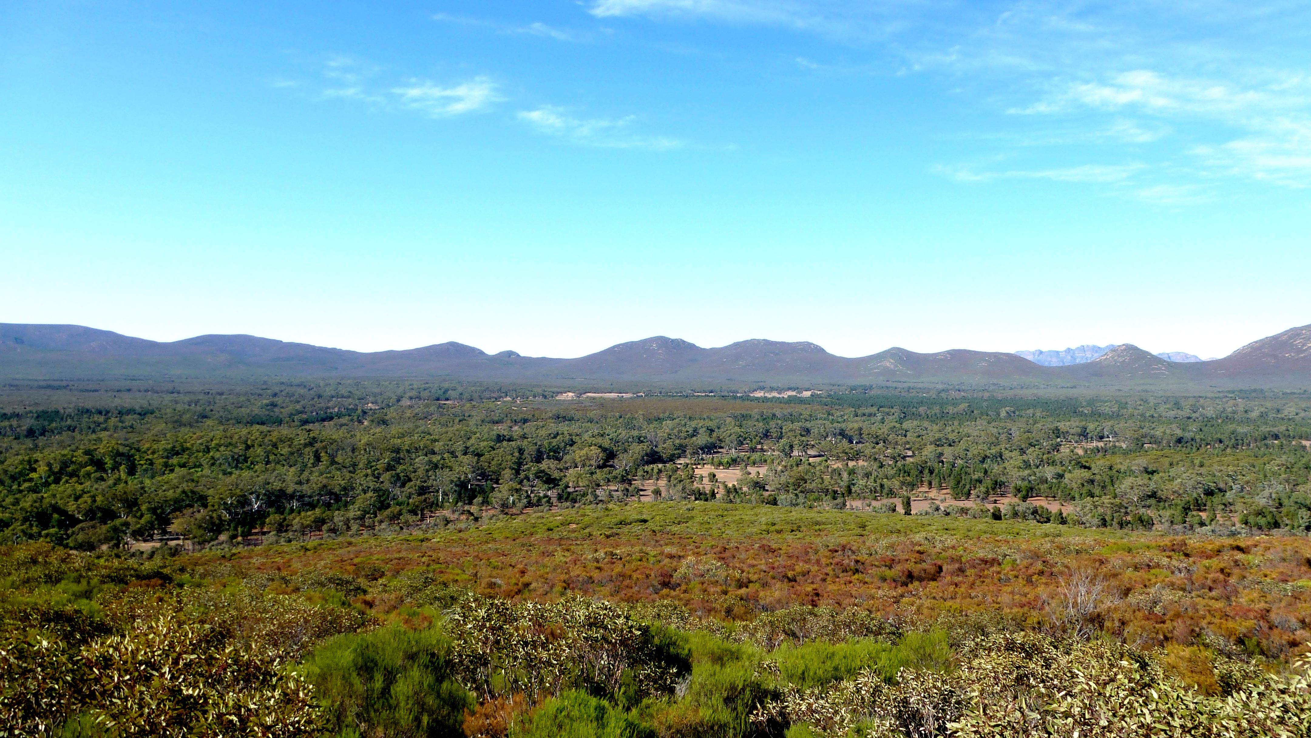 Wilpena Pound, Flinders Ranges, Australien