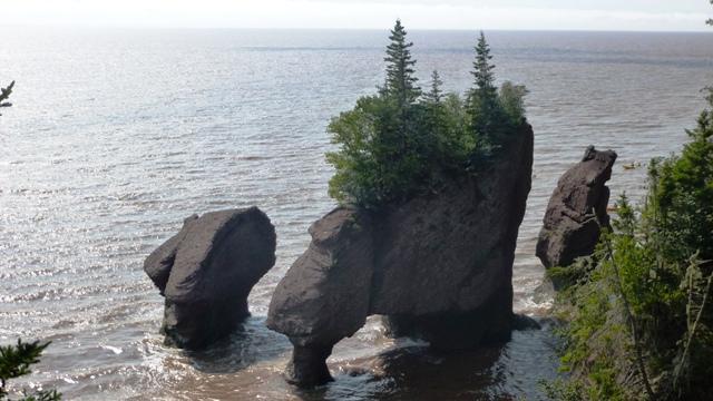 Bay of Fundy - Naturwunder im Osten von Kanada 3