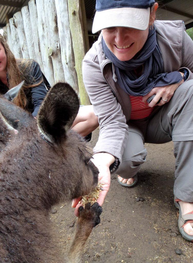 Simone füttert Känguruh, Kangaroo Island