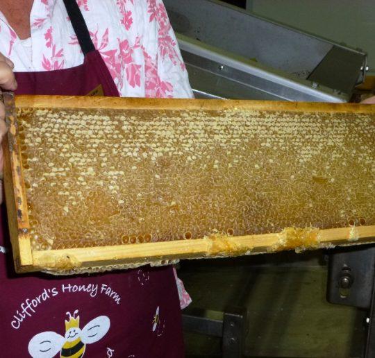 Clifford´s Honey Farm, Kangaroo Island