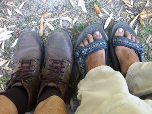 Melbourne und Mornington Peninsula - Süd-Australien intensiv (Part 3) 8