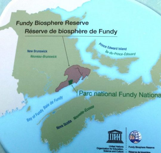 Bay of Fundy - Naturwunder im Osten von Kanada 22