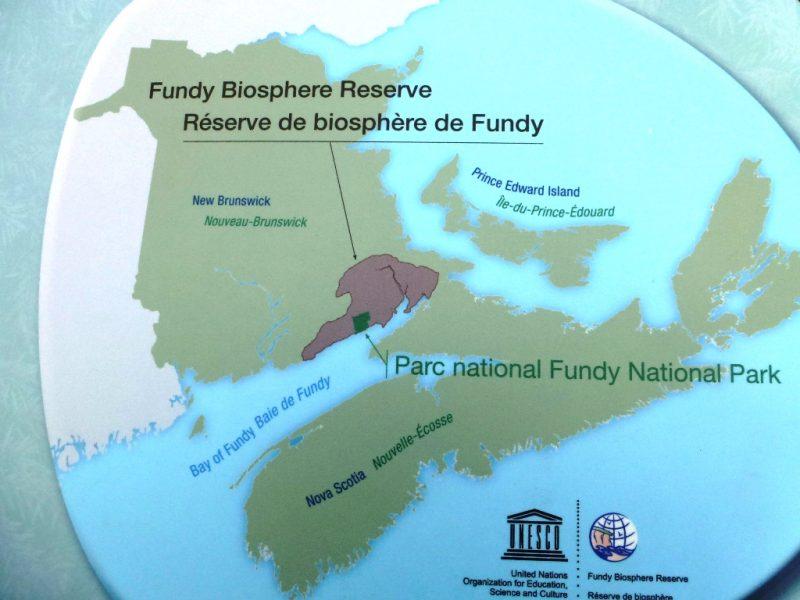 Bay of Fundy - Naturwunder im Osten von Kanada 1
