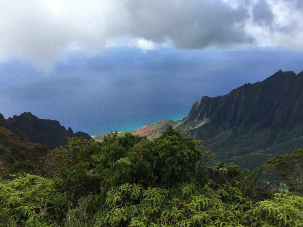 View to the Na Pali Coast, Kauai