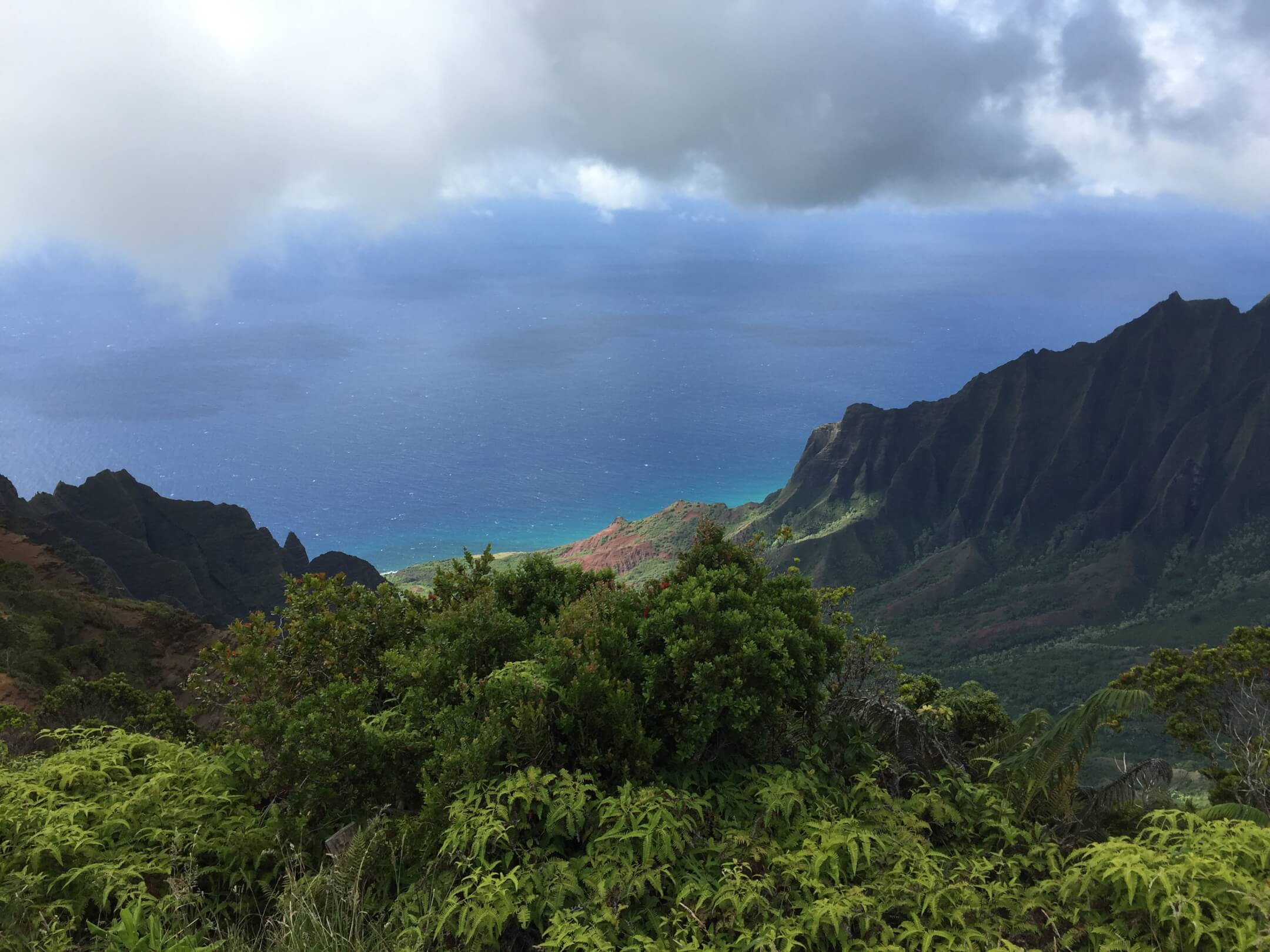 View to the Na Pali Coast, Kauai