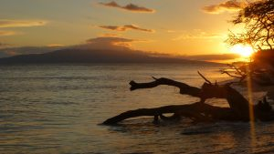 Hawaii: Tipps für eine Reise ins Paradies 22