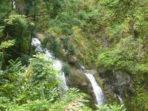Hawaii: Tipps für eine Reise ins Paradies 18