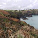 Cornwall im November hat viele Vorteile 8