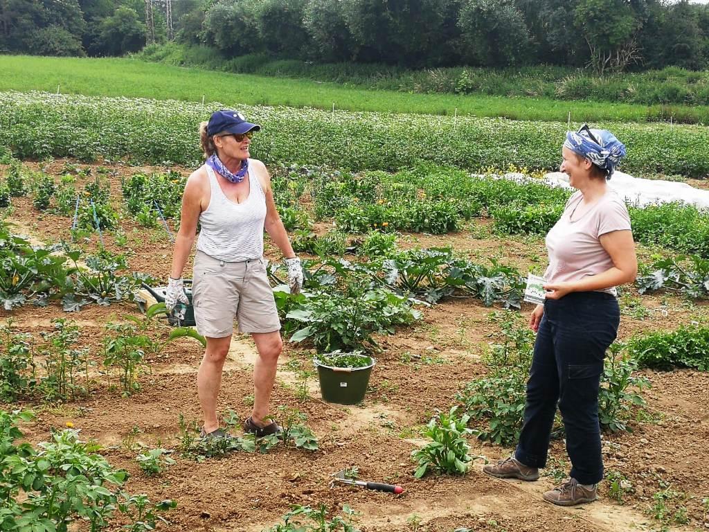 Ackerheldinnen auf dem Bio-Acker #Kultding des Monats Juni 2
