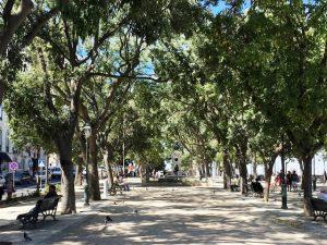 Lissabon und seine Fliesenkunst - ein besonderer Stadtrundgang 7