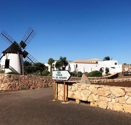 Alles Käse auf Fuerteventura #Kultding des Monats Dezember 9