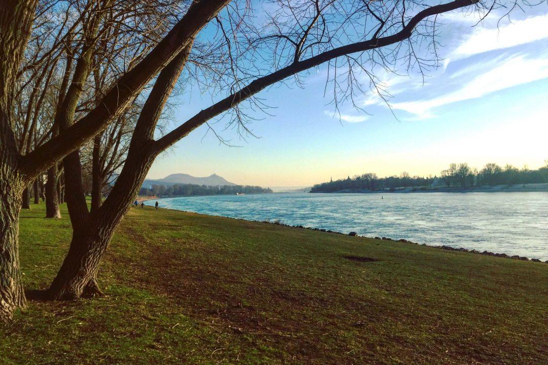 Traumblick vom rechten Rheinufer in Bonn auf das Siebengebirge