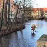 Schöne Städte in Thüringen - Weimar und Erfurt sind Kult 10