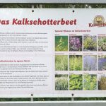 Informationstafeln zu unterschiedlichen Themen rund um Kräuter. Foto: Kultreiseblog