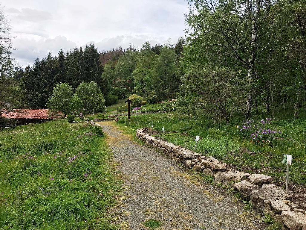 Schön angelegte Wege durch den riesigen Kräuterpark in Altenau. Foto: Kultreiseblog