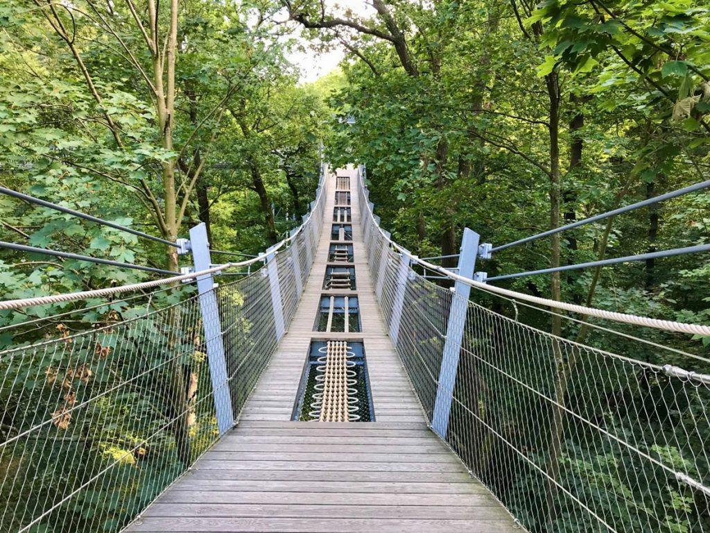 Haengebruecke mit Parcour im Baumwipfelpfad Bad Harzburg (Foto: Kultreiseblog)